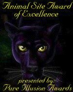 Animal Site Award of Excellence